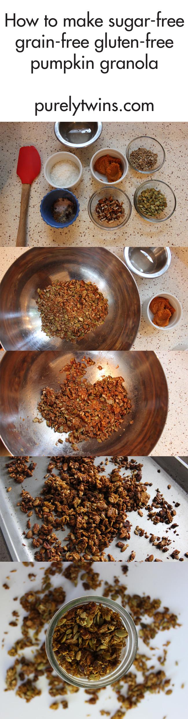 how-to-make-sugar-free-grain-free-pumpkin-granola-purelytwins