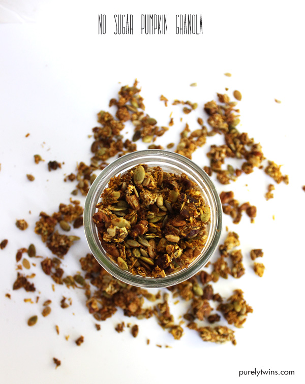 no-sugar-granola-recipe-using-pumpkin-stevia-healthy-breakfast-granola-purelytwins