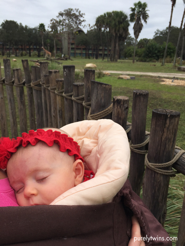 sleeping-baby-in-ergo-baby-carrier-at-disney