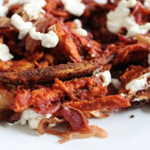 quick-and-easy-gluten-free-grain-free-homemade-chicken-bacon-bbq-fries-purelytwins