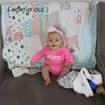 Madison 6 months