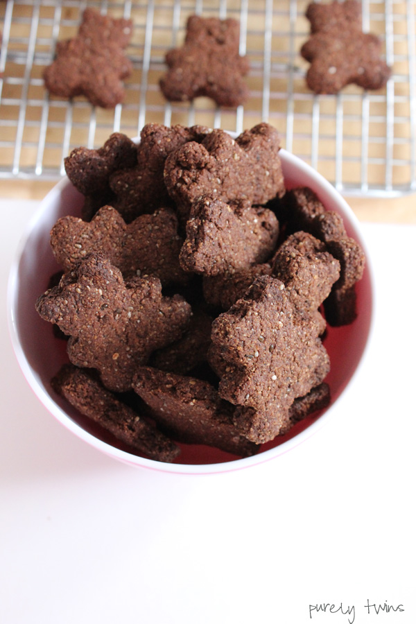 quick-easy-healthy-chocolate-grain-free-vegan-teddy-grahams-purelytwins