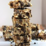 No bake peanut butter cocoa puff fudge marshmallow protein treats