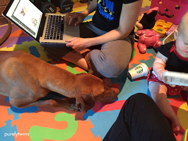 vizsla-sitting-with-kid-for-playtime-purelytwins