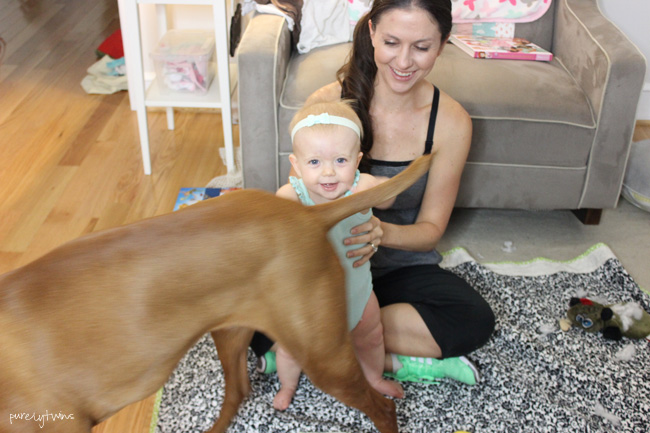 daughter loves her dog a 3 year old vizsla || purelytwins