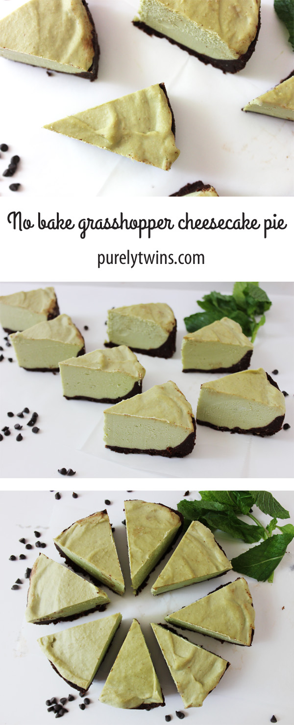 Raw vegan paleo chocolate mint grasshopper cheesecake recipe. Full of healthy fats. No baking required. Perfect summer dessert. | purelytwins.com