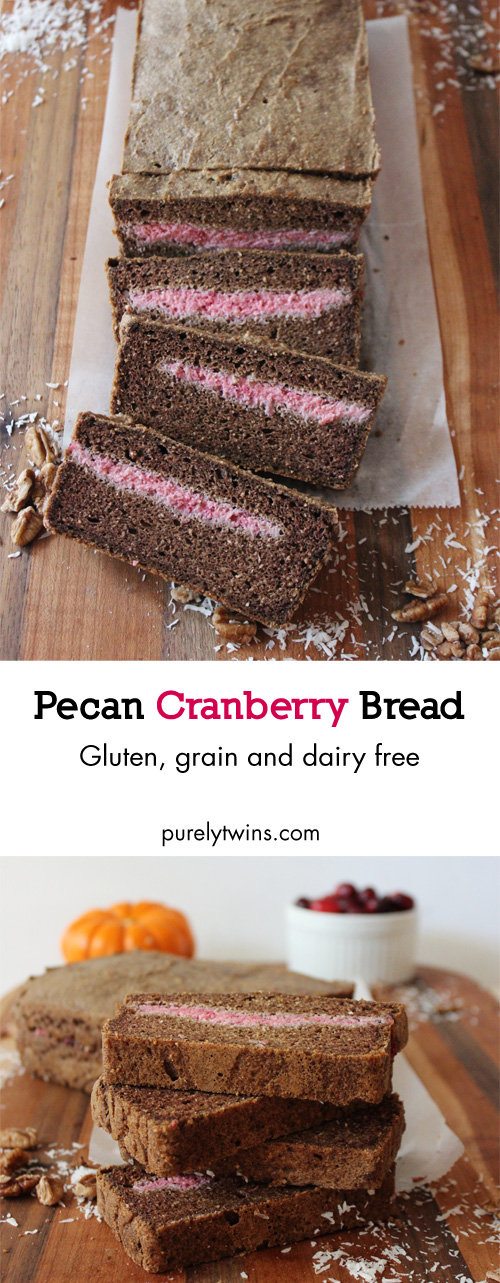 Gluten-free. Grain-free. Dairy-free. Pecan cranberry quick bread made in blender. Paleo.