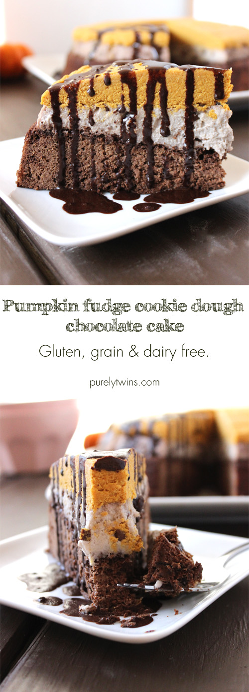 A healthy cake recipe that is low in sugar and gluten, grain, and dairy free. Pumpkin fudge cookie dough chocolate cake. Three amazing flavors and textures made into one dessert recipe.