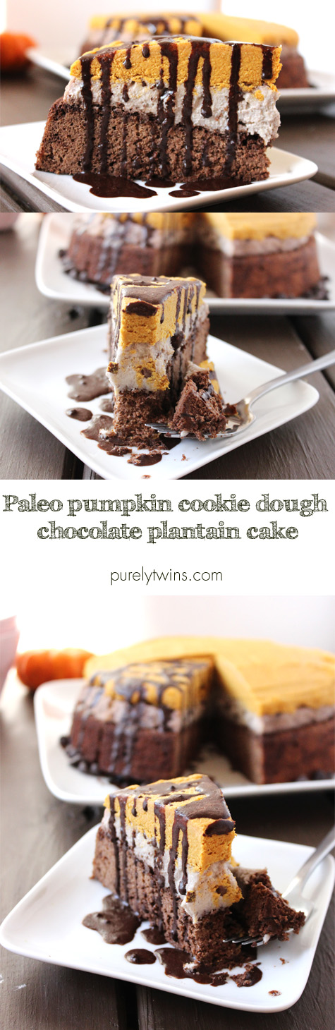 Paleo dessert recipe made from 3 ingredient pumpkin fudge with raw sugar-free cookie dough dip and plantain chocolate cake. | purelytwins.com