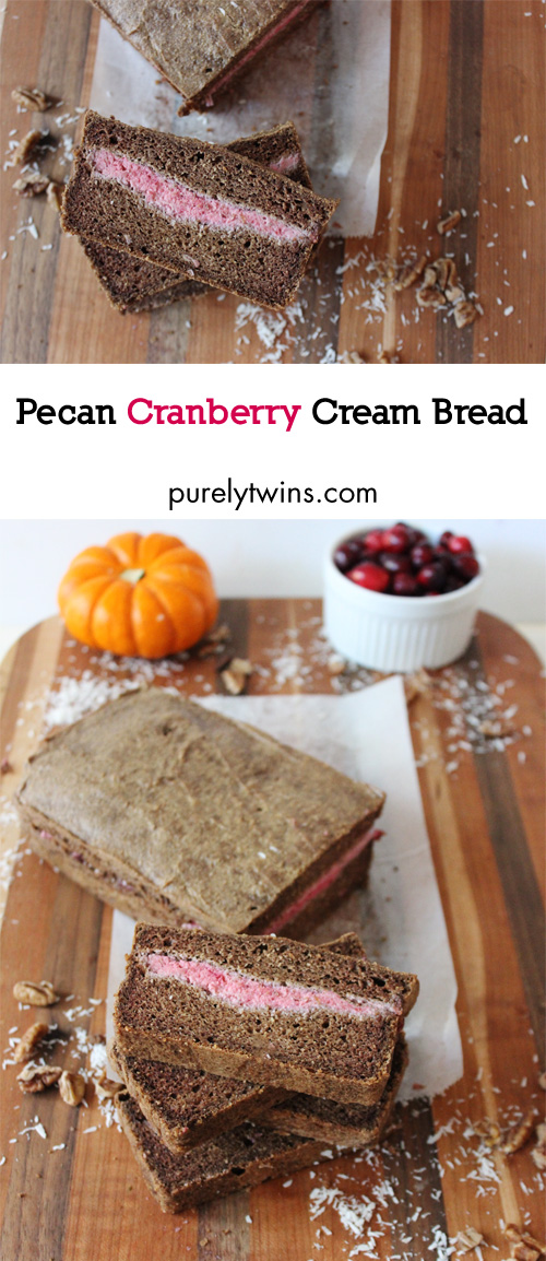 Pecan cranberry cream quick bread recipe made without flour and refined sugar. This bread is easy to make. Just blend in blender and bake. Gluten, grain and dairy free.