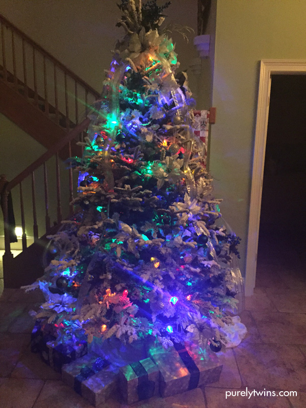 Christmas tree flocked. Florida does snow.