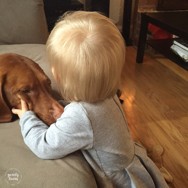 baby girl and her vizsla