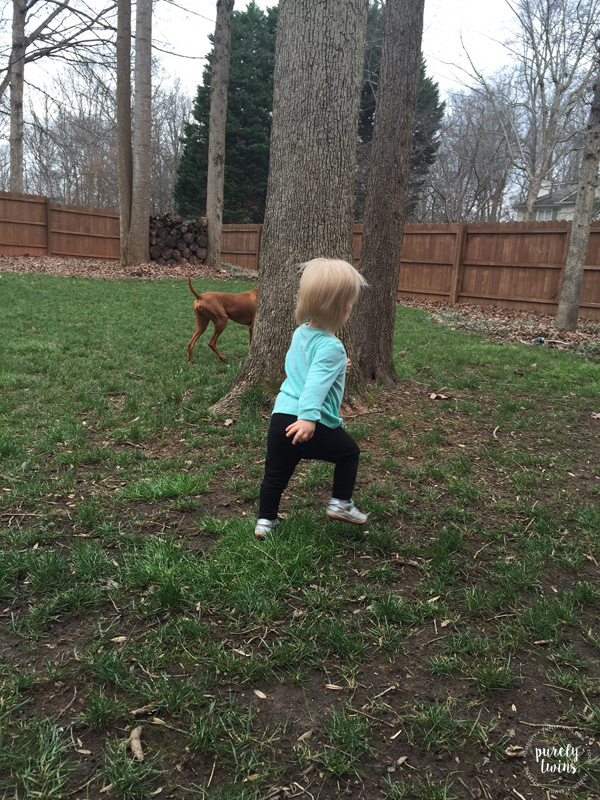 Little girl running with her vizsla dog.