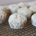 Baked mini protein powdered sugar donut holes