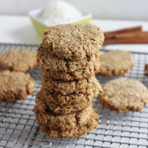 4 ingredient chewy cinnamon protein cookies
