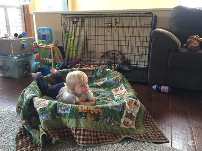 Dog sleeping on couch as toddler in dog bed.