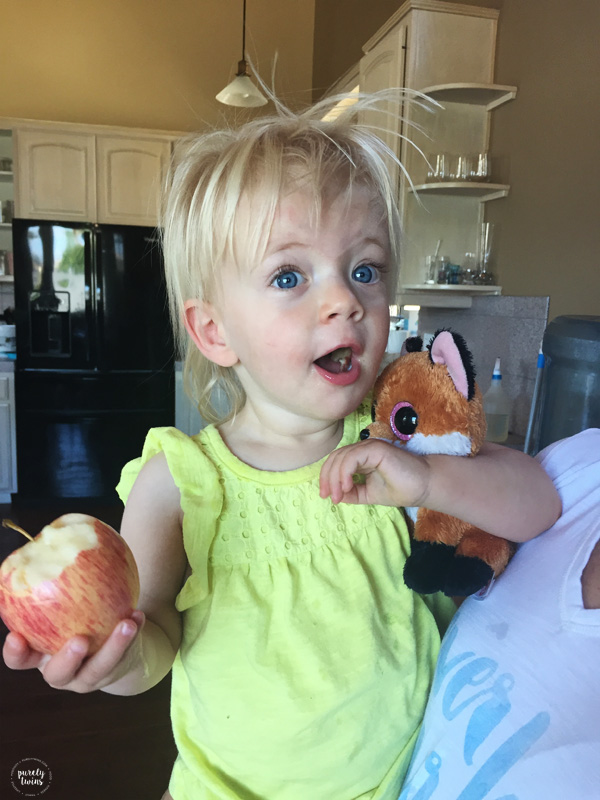 19 month old girl eating apple