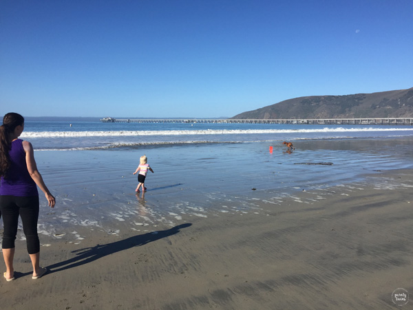 toddler-running-on-beach-with-viszla