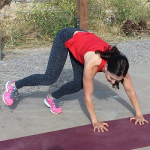 Animal workout a fun way to sculpt your body