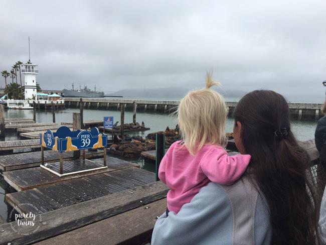 Seeing seals at pier 39.