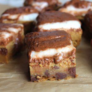 Flourless pumpkin marshmallow peanut butter chocolate chip blondies