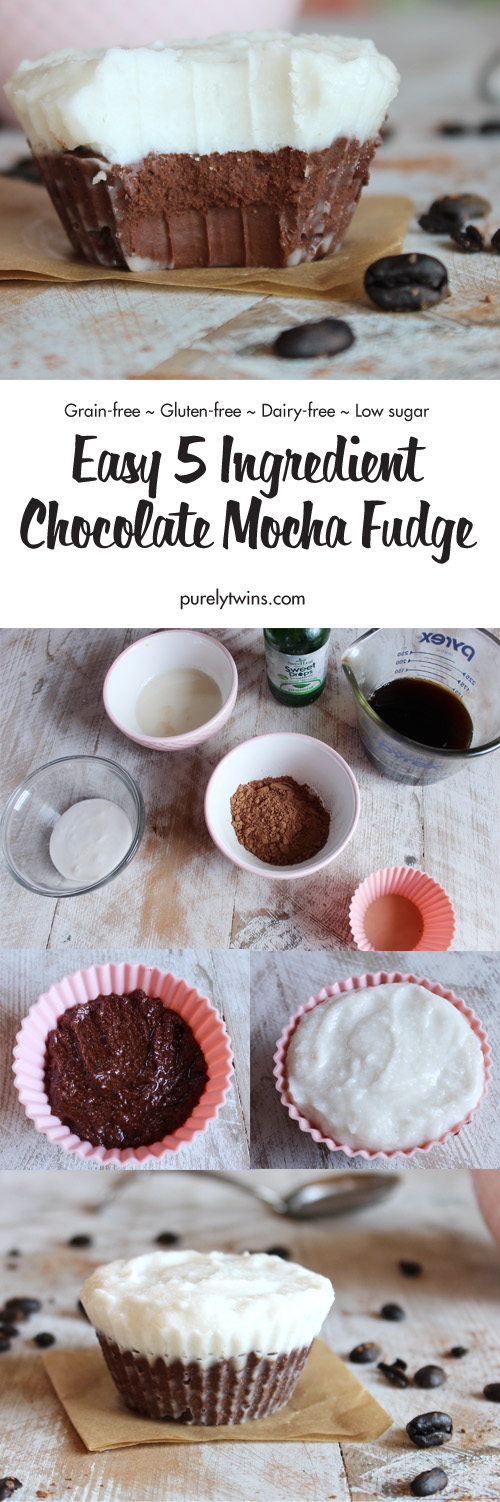 Mocha Fudge is a simple, delicious chocolate fudge recipe made in less than 5 minutes using only 5 ingredients! Smooth and rich fudge, so easy to make and the perfect edible gift! Paleo. Vegan. Low sugar. Gluten-free dessert. A must make recipe the next time you crave a mocha. No need to run up to the local coffee shop to get your fix.