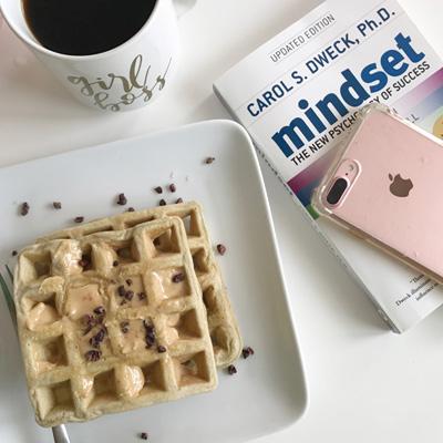 blog mindset book
